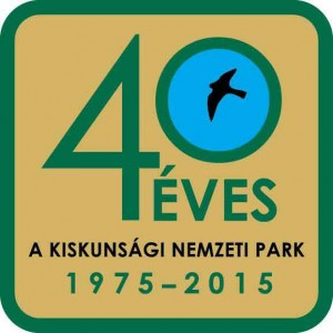 40 eves KNP